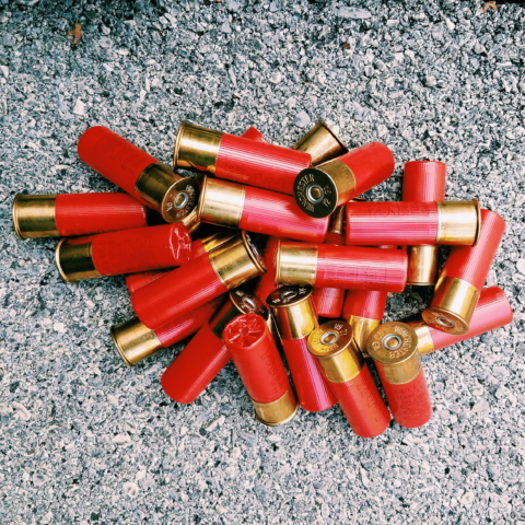Photo of 12 gauge shotgun shells