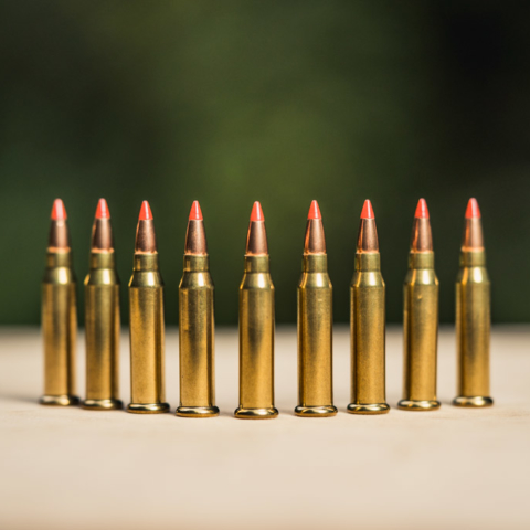 Photo of 17 wsm ammo outdoors