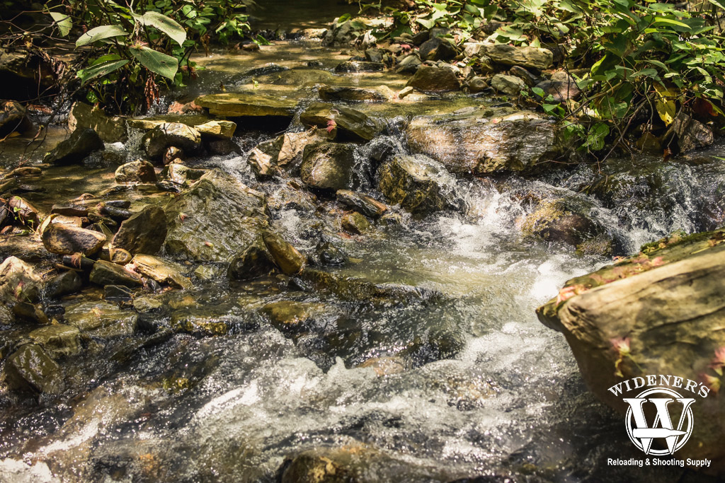 A creek with water roaring through it in the wilderness