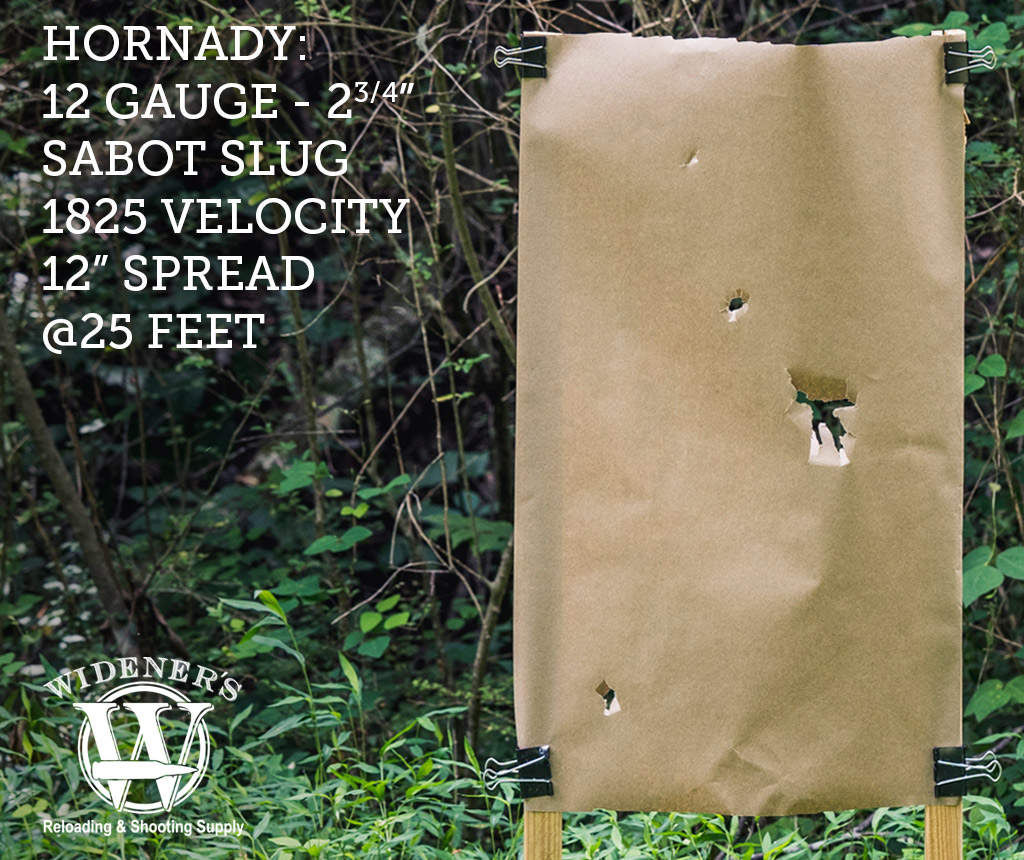 photo of 12 gauge shotgun target shot with a sabot slug