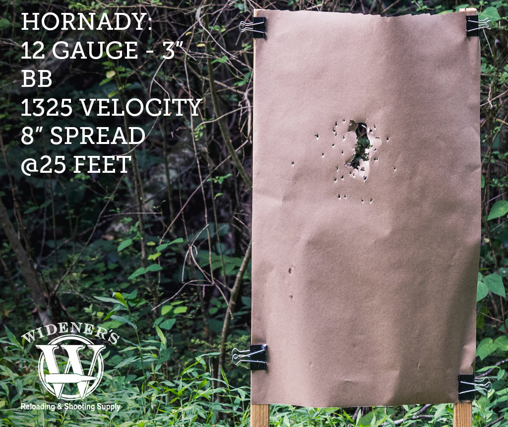 photo of 12 gauge shotgun target shot with BB load