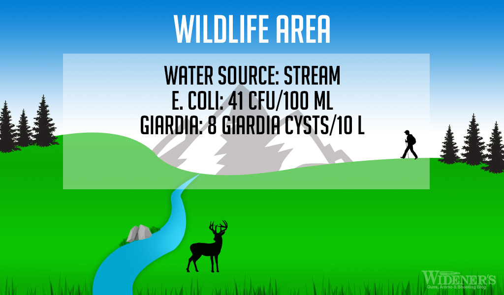 A graphic showing a stream running through a wildlife area as part of our water filter testing