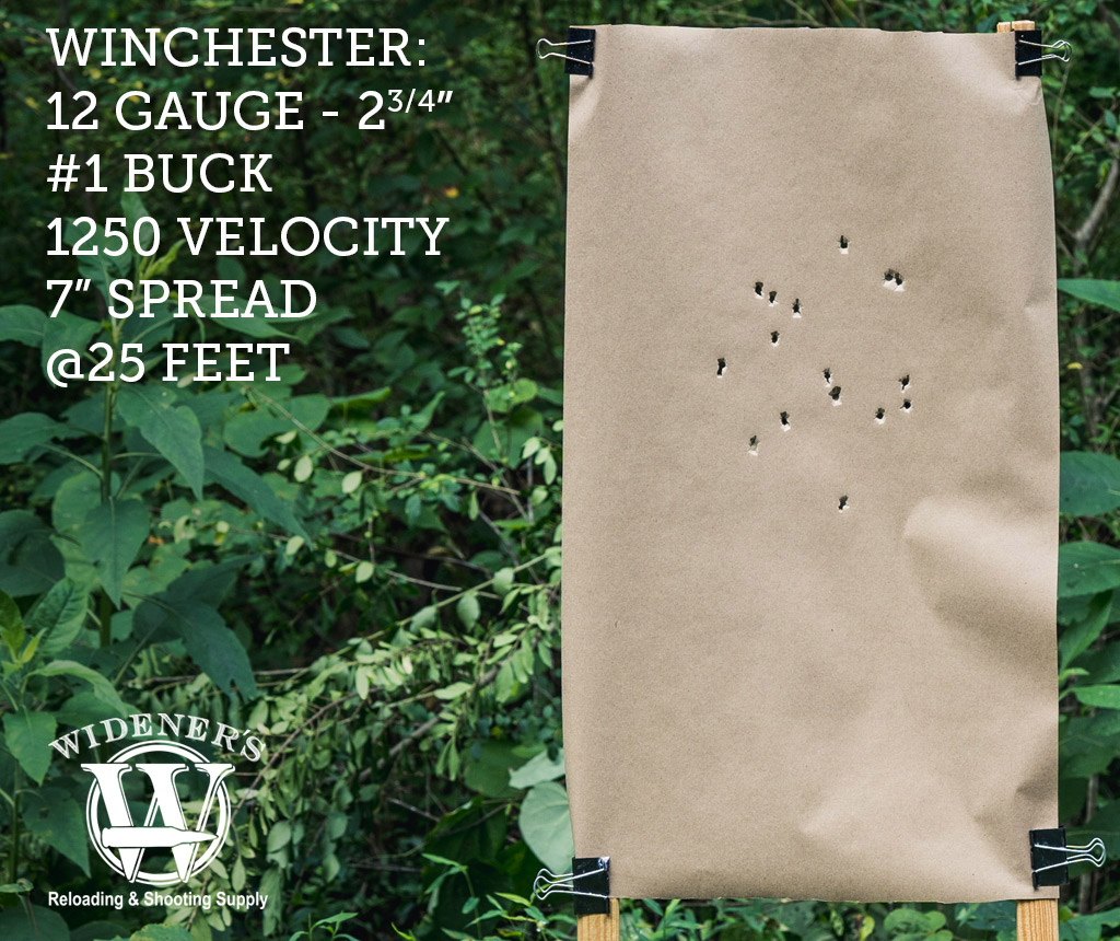 photo of 12 gauge shotgun target shot with buck shot